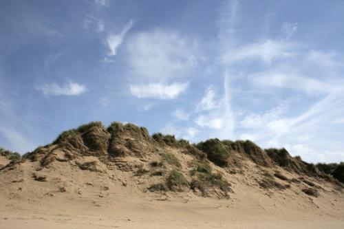 mna-fishermans-path-dunes.jpg