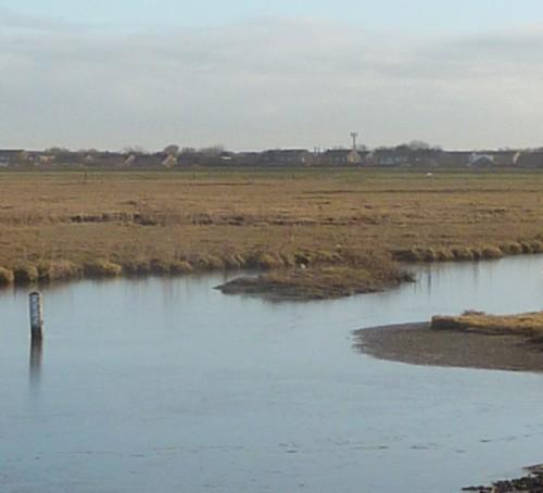 icy-footsteps-at-marshside.jpg