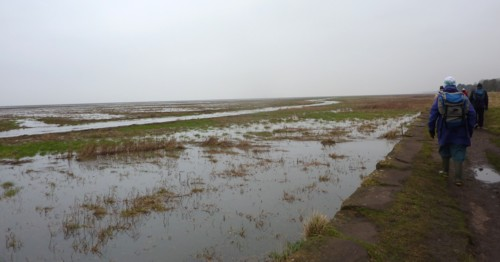 parkgate-high-water.jpg