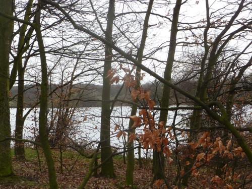 carr-mill-dam-view.jpg