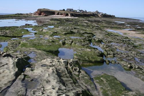 mna-hilbre-low-tide1.jpg