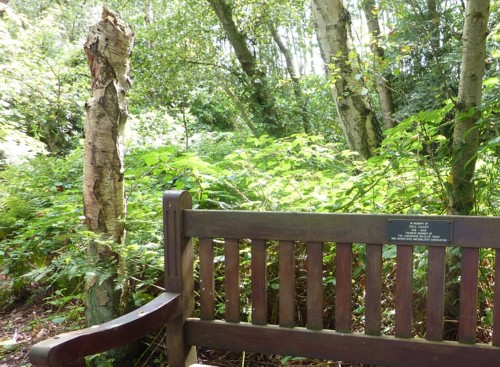 msw-eric-hardy-bench.jpg