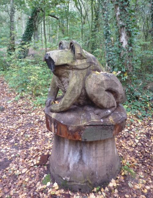 halewood-toad.jpg