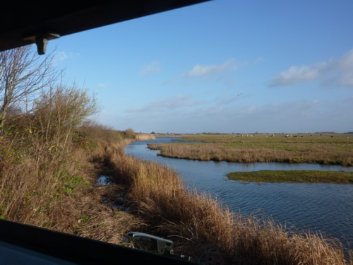 marshside-hide-view.jpg