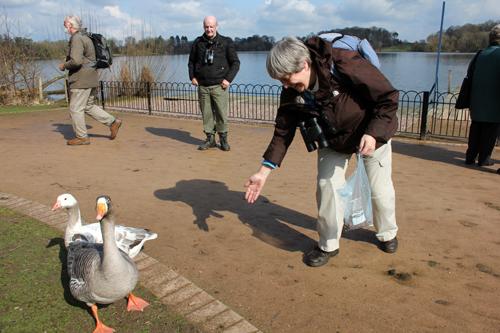 mna-barbara-feeding-geese.jpg