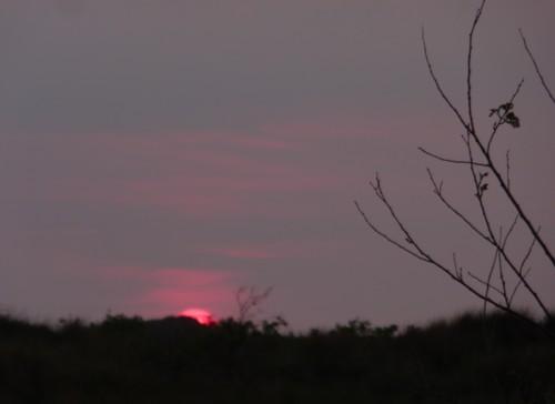 mna-1-sunset.jpg