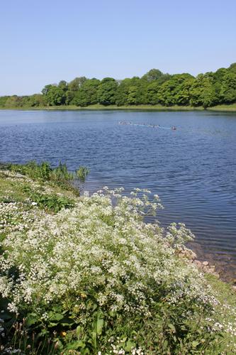 mna-worthington-lakes1.jpg