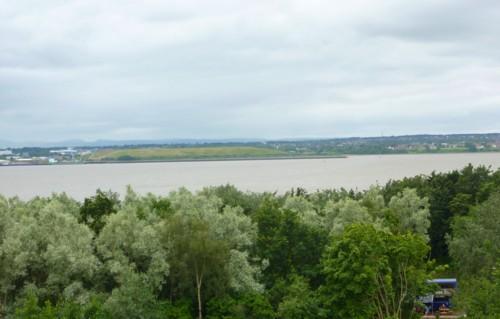 17-festival-river-view.jpg