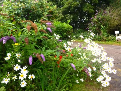23-little-crosby-garden.jpg