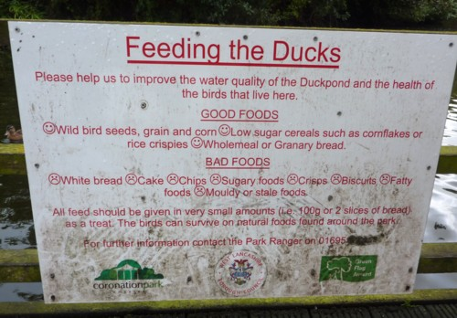 25-ormskirk-duck-feeding-sign.jpg