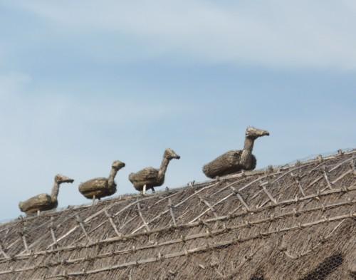 26-churchtown-thatch-ducks.jpg