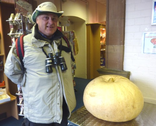 31-croxteth-pumpkin.jpg