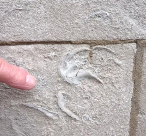 32-rocks-fossils.jpg