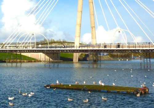 34-southport-bridge-and-birds.jpg
