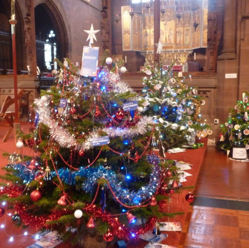 36-waterloo-christmas-trees.jpg