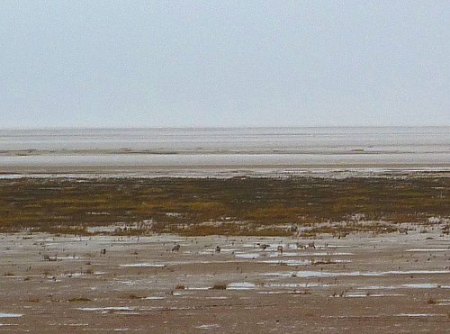 04-southport-spartina-beach.jpg