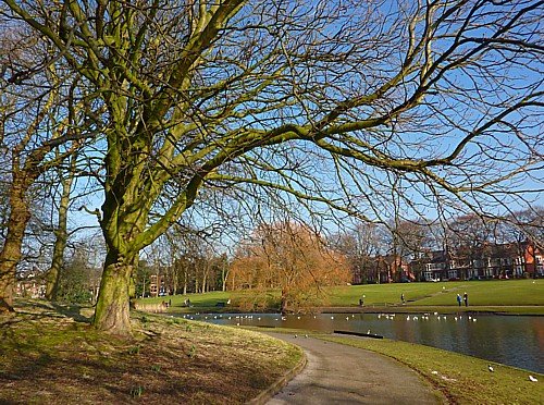 06-greenbank-view.jpg