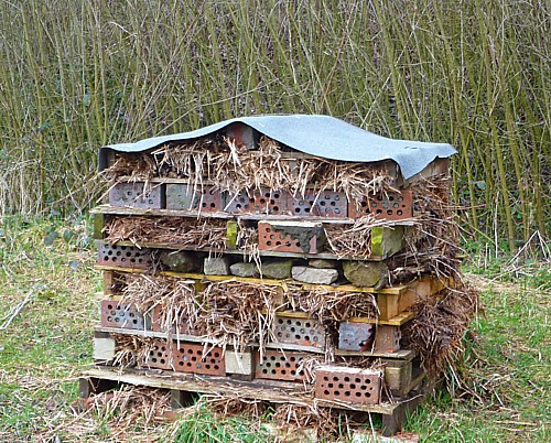 11-waterfront-bug-hotel.jpg
