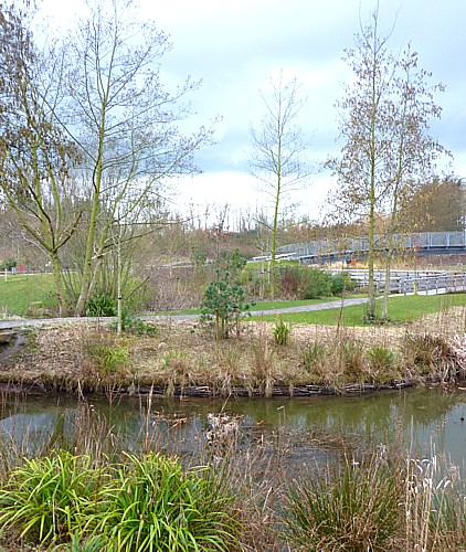11-waterfront-garden-view.jpg