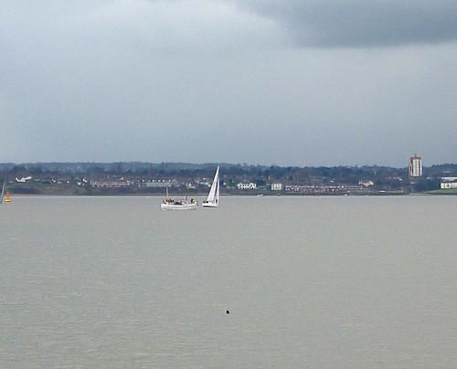 11-waterfront-seal.jpg
