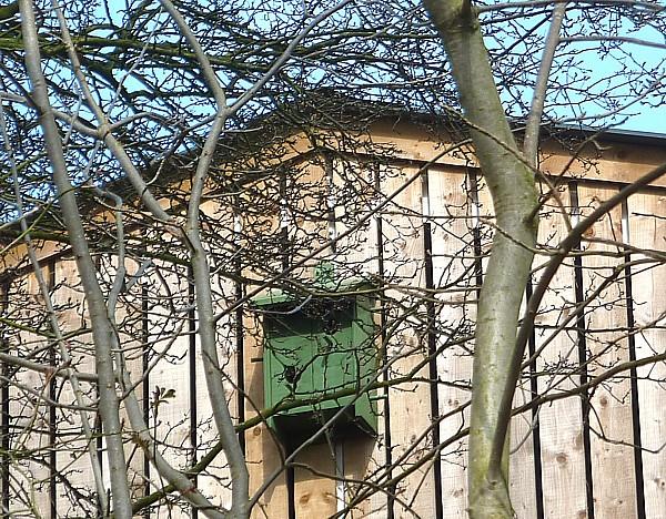 13 Wirral Way sparrow box