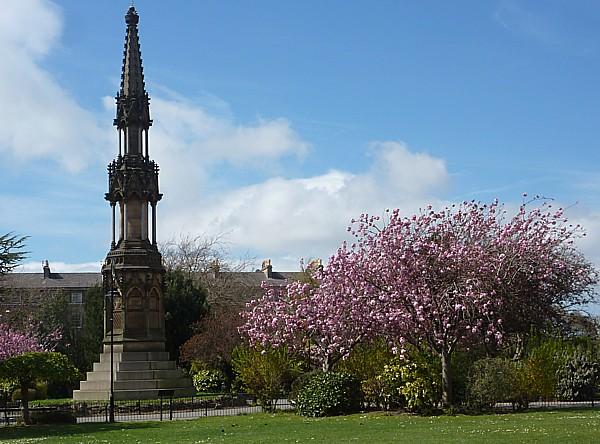 18 Birkenhead Hamilton blossom