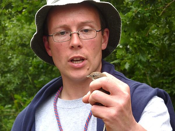25 Woolston whitethroat
