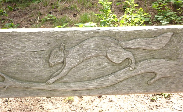26 Freshfield squirrel carving