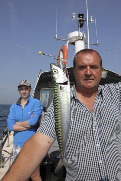 MNA Tuskar Mackerel1