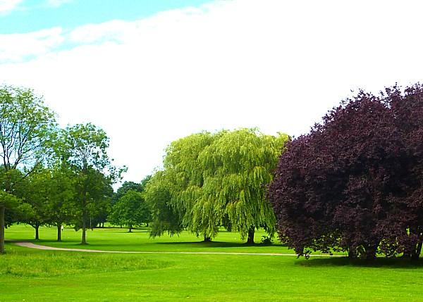 30 Bidston parkland