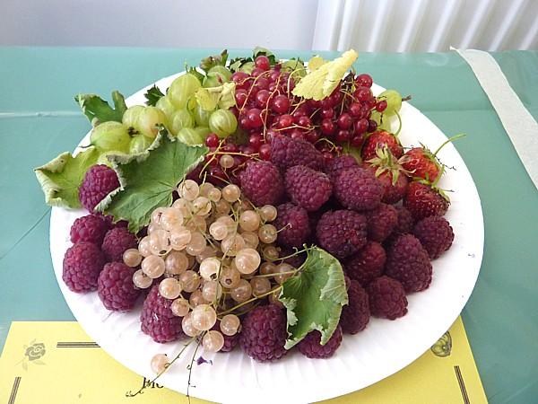 30 Bidston summer fruit