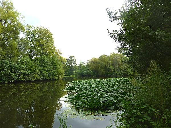 33 Burton view