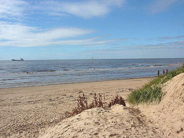 34 Crosby beach and Christmas trees