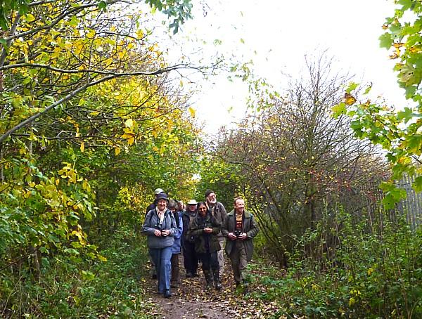 40 Pasture Woodland path