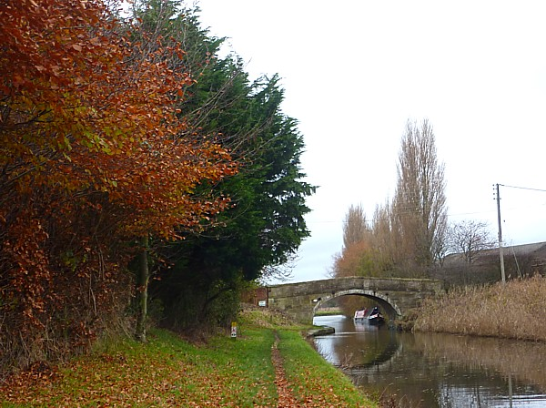 43 Canal 8 Martins Lane bridge