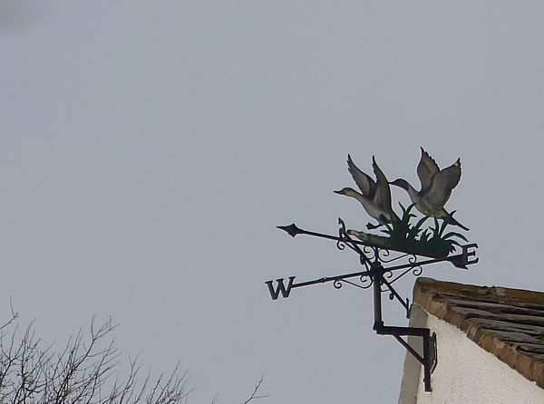 04 Old Quay weather vane