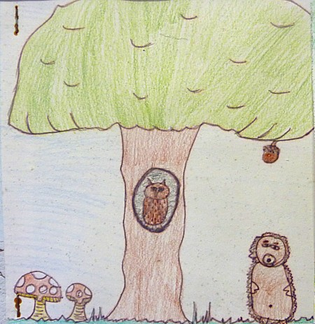 16 Dibbinsdale owl painting