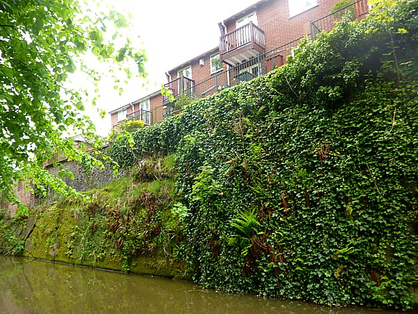 18 Chester canal wall