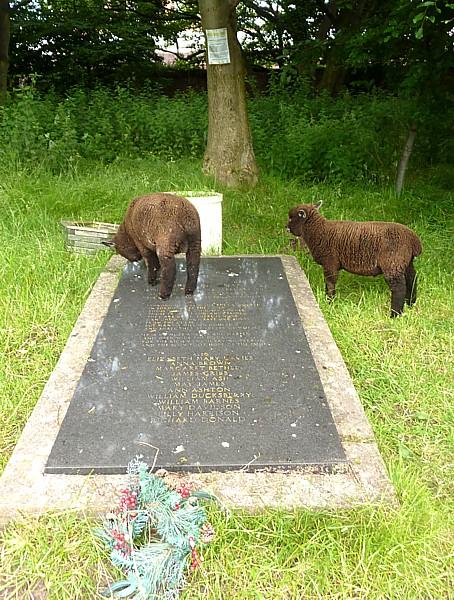25 Walton Tressel grave