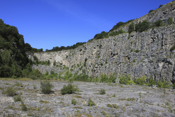 MNA Warton Quarry