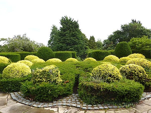 33 Reynolds topiary crown