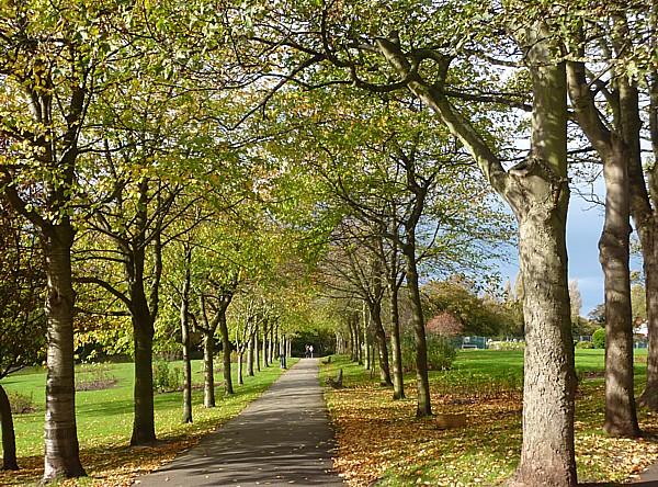 42 West Kirby Ashton upper park