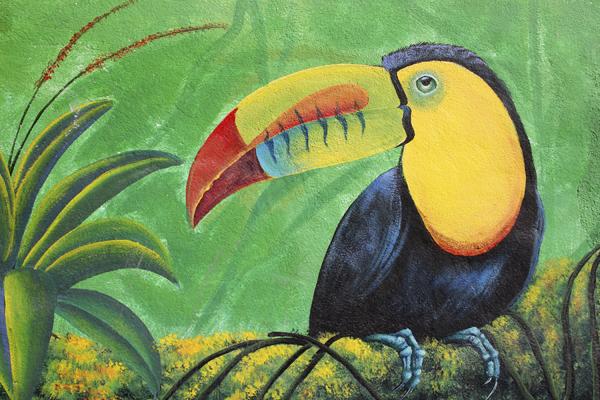MNA Belize Toucan Art2