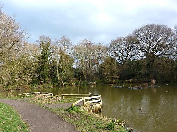 11 Dibbinsdale Woodslee pond