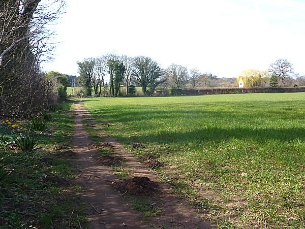 12 Thornton Hough molehills