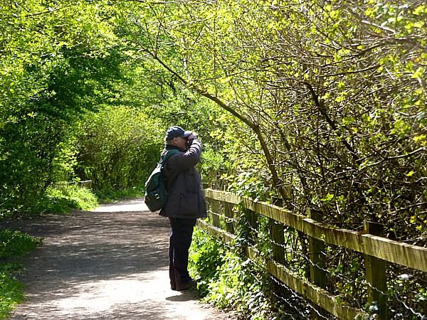 17 Orrell birdwatching
