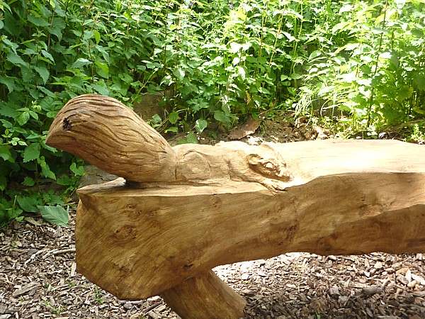 22 Widnes sleeping squirrel