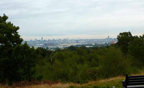 35 Bidston view