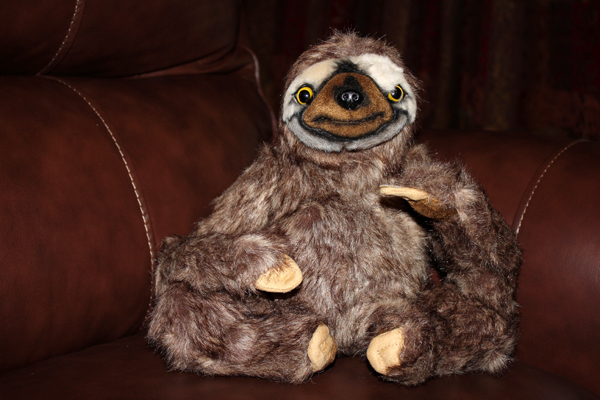 MNA Neil The Sloth1