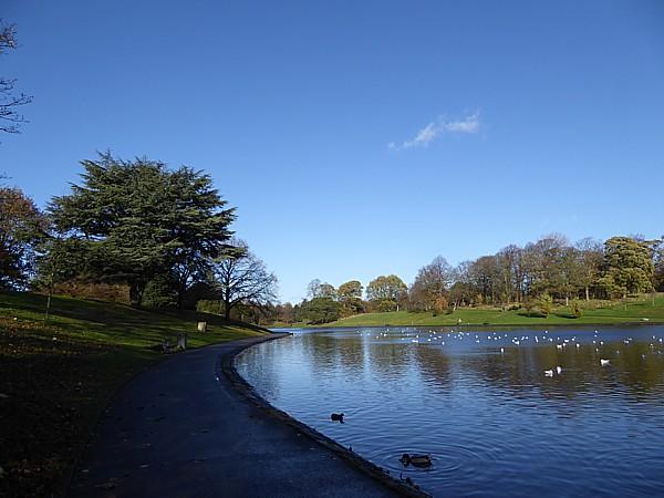 46 Sefton Park view